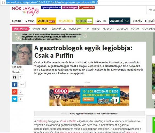 nlc interju goldenblog